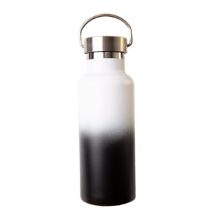 Fusion 500ml insulated bottle